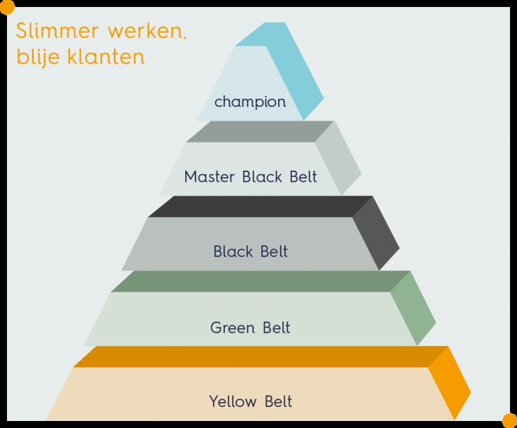 Welke niveaus worden er onderscheiden binnen Lean Six Sigma?